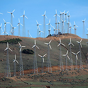 Wind turbines are seen on the hills in the Tehachapi Pass near the Mojave Desert in Southern California on Thursday, March 14, 2013.  Over 16,000 turbines are in use in California, 5000 are located in the Tehachapi Mountains. Today, wind turbines collectively generate 1.3 billion kilowatt-hours of electricity per year - enough to meet the residential needs of nearly 500,000 people. (AP Photo/Alex Menendez)
