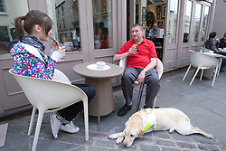 Vision impaired man with guide dog and young sighted guide taking a break whilst out shopping,