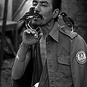 Jul 14, 2008 - Zhari District, Kandahar Province, Afghanistan - An Afghan National Police (ANP) officer who was injured by gunfire sings to birds at an outpost on the front lines in Pashmul in Zhari District, Kandahar Province, Afghanistan.. (Credit Image: © Louie Palu/ZUMA Press)