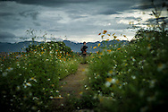 Caucasian tourist visit Hill A1 aka 'Eliane 2' in Dien Bien Phu, Dien Bien Province, Vietnam, Southeast Asia