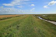 River Ore salt marsh coastal landscape, Hollesley, Suffolk, England, UK