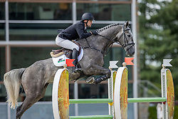 Hill Luke, Kelton<br /> Nationaal Kampioenschap KWPN<br /> 5 jarigen springen final<br /> Stal Tops - Valkenswaard 2020<br /> © Hippo Foto - Dirk Caremans<br /> 19/08/2020