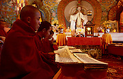 Monks reciting prayer mantras on a festival day at Aloobari Monastery Darjeeling West Bengal India