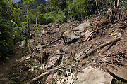 The expedition walks next to an area of forest  illegally cleared for a chacra (farm), primarily for growing maize. Next to this chacra there was also evidence of illegal cedar logging.