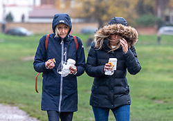 © Licensed to London News Pictures. 1/411/2020. London, UK. Walkers on Wimbledon Common, South West London brave the wind and the rain as the Met Office issue a yellow weather warning for heavy rain in the South East this weekend with wind speeds in excess of 50mph. Photo credit: Alex Lentati/LNP