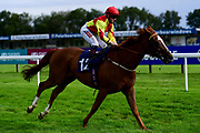 Secret Art ridden by Hollie Doyle and trained by Gary Moore ridden in the Kentucky Derby On Sky Sports Racing Handicap - Mandatory by-line: Ryan Hiscott/JMP - 24/08/20 - HORSE RACING - Bath Racecourse - Bath, England - Bath Races