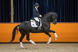 Fry Charlotte, GBR, Jayson<br /> Fotodag KWPN Hengstenkeuring 2021<br /> © Hippo Foto - Dirk Caremans<br /> 09/01/2021