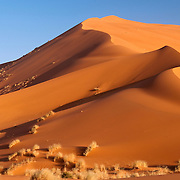 Sand dune in the Sahara Desert, Morroco