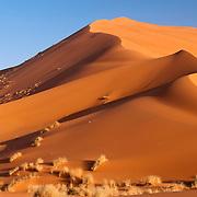 Sand dune in the Sahara Desert, Morroco