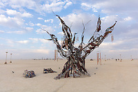 Methuselah is a 20′ metal sculpture of the world's oldest tree. The tree's bark is steel, patinated to blue, brown & white, and seams of glass reveal propane flames within the trunk, reflected in a mirror below. The tree's roots form benches on which Burners can congregate. Ancestry and evolution are central themes for our work, whose namesake's rings and branches bore witness to the entire span of recorded human history. Great trees gave their limbs and leaves as axles, paper, bows, hulls and roofs, and held space and time for our ancestors' radical rituals. Black Rock City contains many altars of dance and ecstasy, and many more of learning and relaxation, but the city provides comparatively few spaces for contemplation and remembrance. Circular spaces, lone trees and eternal flames are all strong ritualistic symbols and joining them in Methuselah helps to dislocate Participants from the frenzy of present day time and re-anchors them in the still time of mythology. URL: http://www.graydavidson.com/art/methuselah Contact: msnaiman12@gmail.com
