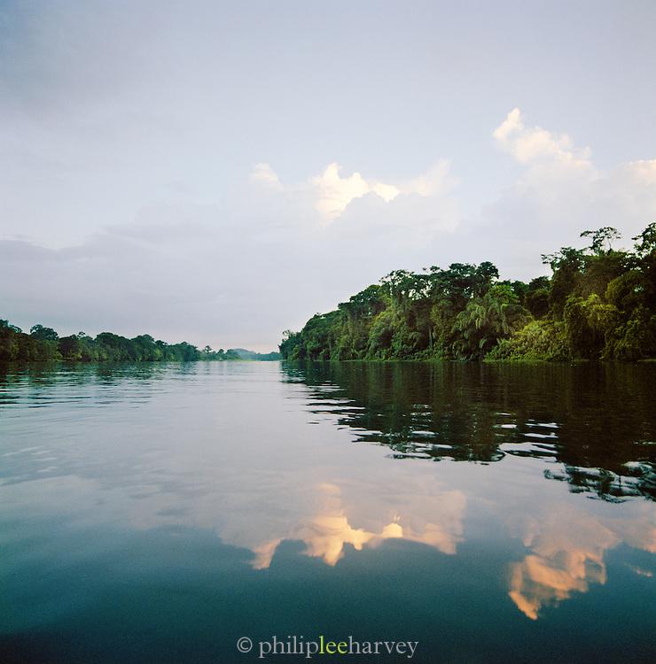 River and rainforest landscape at the Tortuguero National Park, East Coast, Tortuguera, Limon, Costa Rica