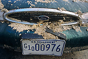 Days after the terrorist attacks on America in September 2001, we see front grill and bonnet (hood) paintwork of a parked US Government Ford car in Greenwich Village, scratched by scraped dirt and covered in concrete dust and grit that has been blown from nearby collapsed buildings at Ground Zero. The bent number plate of this now wrecked Federal-owned vehicle shows the impact on property and on the US economy. Total damage after this al-Qaeda plot has been put at $100 billion including: the loss of four civilian aircraft, buildings, the Pentagon, cleanup, property and infrastructure. emergency funds, job losses, unrecoverable property, insurance and air traffic revenue.