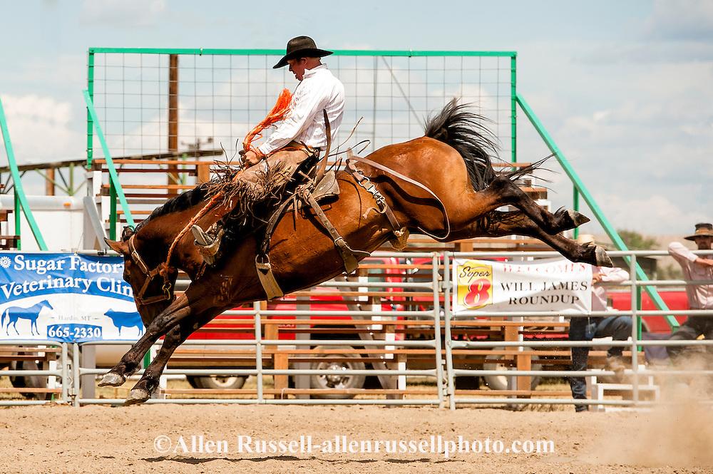 Will James Roundup, Ranch Rodeo, Ranch Bronc Riding, Sky Grant, Hardin, Montana.
