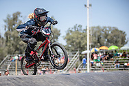 #99 (YAMAGUCHI Daichi) JPN at round 8 of the 2018 UCI BMX Supercross World Cup in Santiago del Estero, Argentina.