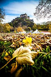 Edinburgh Castle seen from the leaves on Princes Street Gardens..©Michael Schofield.