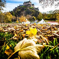 Edinburgh, November 2012