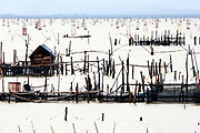 Koh Yor (Yor Island on Songkhla Lake), is surrounded by fish traps which create a somewhat surreal landsape.A fisherman passes one of the modest fishermens' huts, built at the end of jettys out over the Thale Sap, on his way to examining his fish traps.