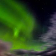 Aurora Borealis in the Geysir area, Iceland