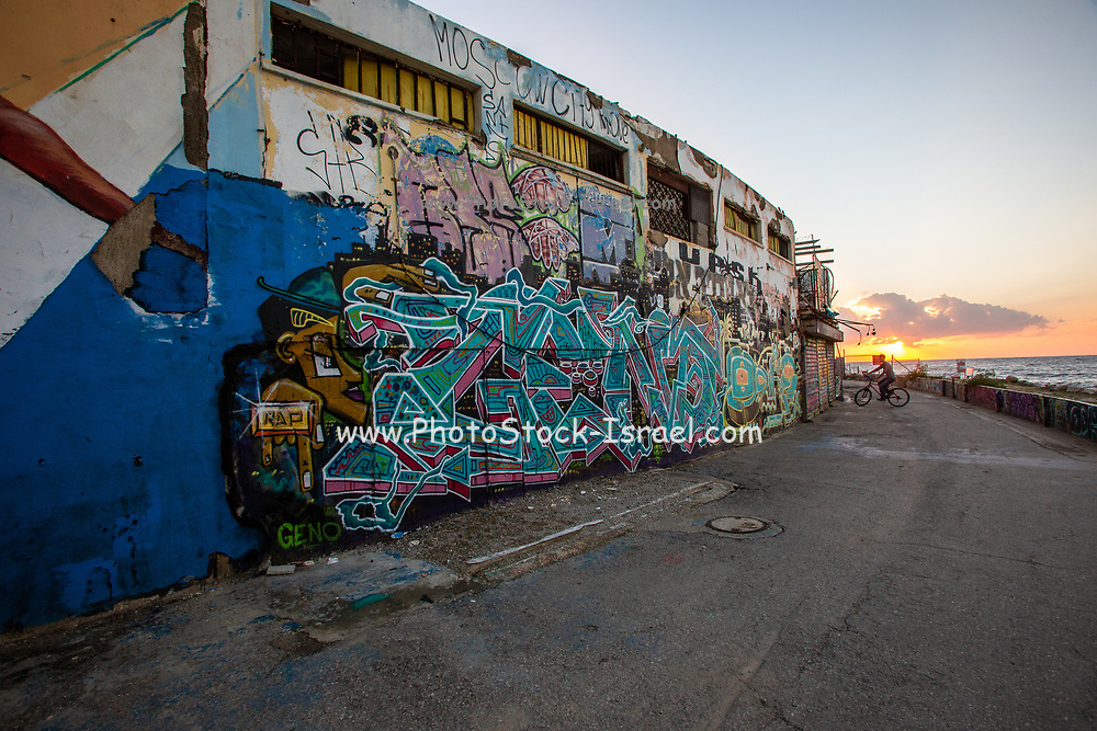 Graffiti on the the wall of the deserted and neglected Dolphinarium building in Tel Aviv, Israel. This building was demolished in 2019