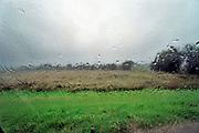 Nederland, Ubbergen, 8-10-2020Regendruppels, waterdruppels tegen een raam tijdens een hevige regenbui.Foto: ANP/ Hollandse Hoogte/ Flip Franssen