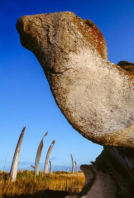 Whale bones, Mechigmen archeological village site, Chukotsk Peninsula, NE Russia, 1992