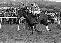 Punchestown Racecourse, Punchestown, Dublin, circa April 1986 (Part of the Independent Newspapers Ireland/NLI Collection).