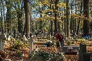 A woman clears fallen leaves at Rakowicki Cemetery in Krakow, Poland 2019.