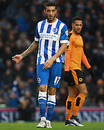 Brighton defender Connor Goldson during the Sky Bet Championship match between Brighton and Hove Albion and Wolverhampton Wanderers at the American Express Community Stadium, Brighton and Hove, England on 1 January 2016. Photo by Bennett Dean.
