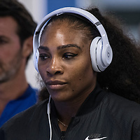 Serena Williams of the United States on day ten of the 2017 Australian Open at Melbourne Park on January 25, 2017 in Melbourne, Australia.<br /> (Ben Solomon/Tennis Australia)