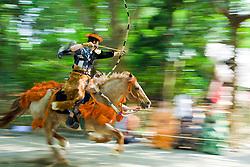 Asia, Japan, Honshu island, Kanagawa Prefecture, Kamakura, mounted archer during Yabusame, a revival of medieval samurai archery on horseback, at Kamakura Matsuri, an annual festival held at the Tsurugaoka Hachimangu shrine