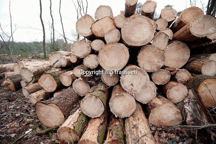 Nederland, Berg en Dal, 20-2-2020In de bossen rond de Leemkuil zijn veel bomen gekapt . Door de droogte van afgelopen jaren zijn veel naaldbomen aangetast door een insect, de letterzetter .  Het is een kevertje wat zich door de boom vreet onder de schors .  Met harvesters, machines die de bomen in een keer kunnen zagen, onttakken en in stukken verdelen is de kap uitgevoerd.  De versnipperde boomstammen worden als biomassa opgestookt in een biocentrale, biomassacentrale  . Foto: Flip Franssen