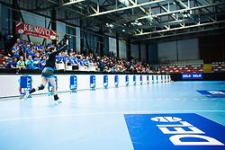 during handball match between RK Krim Mercator and Brest Bretagne Handball in 2nd main round of Women's DELO EHF Champions League 2019/20, on February 2, 2020 in Kodeljevo, Ljubljana,  Slovenia. Photo Grega Valancic / Sportida