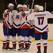 Iceland celebrate a goal scored by Johann Leifsson during the Iceland V New Zealand match during the 2012 IIHF Ice Hockey World Championships Division 3 held at Dunedin Ice Stadium. Dunedin, Otago, New Zealand. 19th January 2012. Photo Tim Clayton