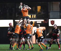 Cheetahs' Reniel Hugo<br /> <br /> Photographer Mike Jones/Replay Images<br /> <br /> Guinness PRO14 Round Round 18 - Dragons v Cheetahs - Friday 23rd March 2018 - Rodney Parade - Newport<br /> <br /> World Copyright © Replay Images . All rights reserved. info@replayimages.co.uk - http://replayimages.co.uk