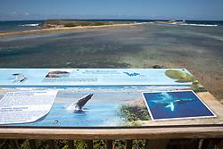 Nature Reserve Educational Display
