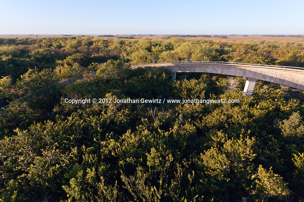 The concrete walkway leading to the observation tower in the Shark Valley section of Everglades National Park, Florida. WATERMARKS WILL NOT APPEAR ON PRINTS OR LICENSED IMAGES.