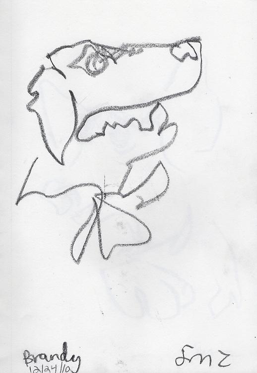 "Brandy – 6.25""x8.25"", Graphite on paper, 2010"