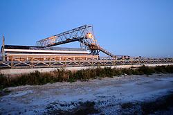 Il complesso produttivo delle saline è situato nel comune italiano di Margherita di Savoia (nome dato dagli abitanti in onore alla regina d'Italia che molto si adoperò nei confronti dei salinieri) nella provincia di Barletta-Andria-Trani in Puglia. Sono le più grandi d'Europa e le seconde nel mondo, in grado di produrre circa la metà del sale marino nazionale (500.000 di tonnellate annue).All'interno dei suoi bacini si sono insediate popolazioni di uccelli migratori e non, divenuti stanziali quali il fenicottero rosa, airone cenerino, garzetta, avocetta, cavaliere d'Italia, chiurlo, chiurlotello, fischione, volpoca..Un capannone per lo stoccaggio del sale con una gru a ponte ed un nastro trasportatore