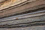 Sedimentary layers of various volcanic eruptions<br /> Chimborazo Forest Reserve<br /> Andes<br /> ECUADOR, South America