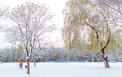 19.04.2017, Zell am See, AUT, Wintereinbruch in Salzburg, im Bild ein Arbeiter beim einsammeln von heruntergebrochen Ästen von Bäumen // a worker pick up the broken down branches of trees, Zell am See, Austria on 2017/04/19. EXPA Pictures © 2017, PhotoCredit: EXPA/ JFK