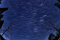 Winter Nighttime Sky Over New Jersey. Composite star trail image (21:30 - 21:59) taken with a Nikon D850 camera and 8-15 mm fisheye lens (ISO 800, 15 mm, f/8, 30 sec). Raw images processed with Capture One Pro and the composite created with Photoshop CC (statistics, maximum).