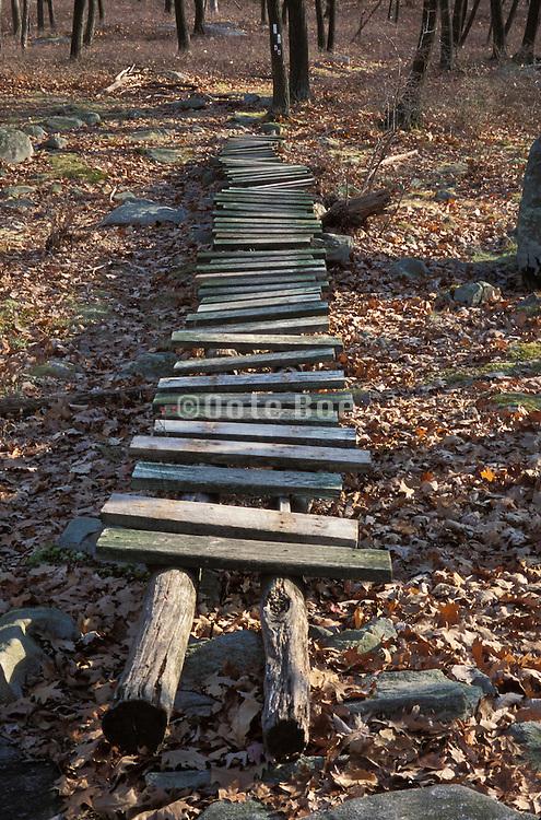Old wooden walkway over fallen leaves