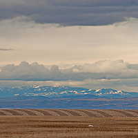 A spring storm hovers over harvested wheat fields in the Gallatin Valley, near Bozeman, Montana.  The Horseshoe Hills and Big Belt Mountains rise in the background.
