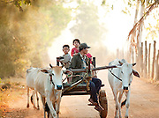 A family on a cart pulled by two cows down a dirt track in rural Cambodia