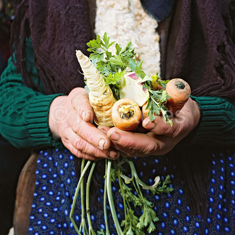 A peasant farmer holds organically grown vegetables for sale at the market in Sighetu Marmatiei, Maramures, Romania. 90% of vegetable production is grown in small household plots and mainly used for self-consumption and for sale on local markets.