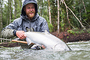 A rainy day chinook salmon is released by David Page back to BC's Dean River..