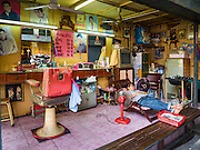 """06 FEBRUARY 2017 - BANGKOK, THAILAND: A barber naps while waiting for customers in his shop in what used to be known as Kalabok Market under the Phra Khanong Bridge in the Phra Khanong district of Bangkok. Kalabok is the Thai word for hairdresser and the market was called Kalabok because there were many barbershops and hairdressers under the bridge. In 1985, the city changed the name of the market to """"Singha Market."""" There are still about 10 small men's barbershops, most with just one barber, and four women's salons, most with one hairdresser,  under the bridge.      PHOTO BY JACK KURTZ"""