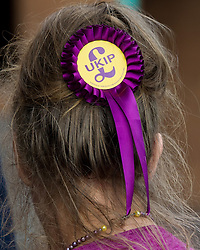 September 17, 2016 - London, England, United Kingdom - Image ©Licensed to i-Images Picture Agency. 17/09/2016. London, United Kingdom.  A woman with a UKIP rosette in he hair arrives for the second day of the UKIP conference in Bournemouth. Picture by i-Images (Credit Image: © i-Images via ZUMA Wire)