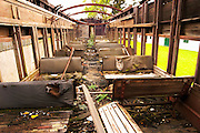 Bouza has a collection of old railway carriages that will be converted into a tasting room. Currently in a state of terrible disrepair. The interior with broken benches no roof Bodega Bouza Winery, Canelones, Montevideo, Uruguay, South America
