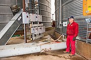 Alan Hinkle, OEC member from Tuttle unloads soybeans at Minco Elevator.